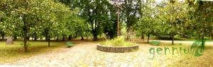 parque03