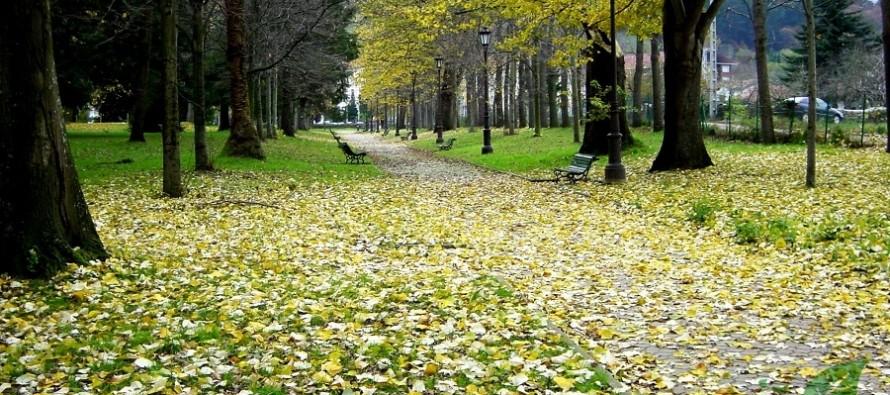 El Parque de Alceda, declarado jardín botánico
